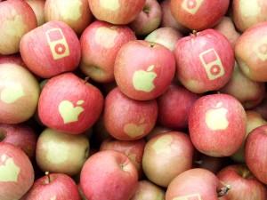 苹果牌苹果诞生了!iPod Apple和Apple Apple